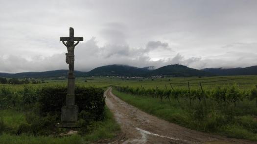 La strada dei Vini Francia