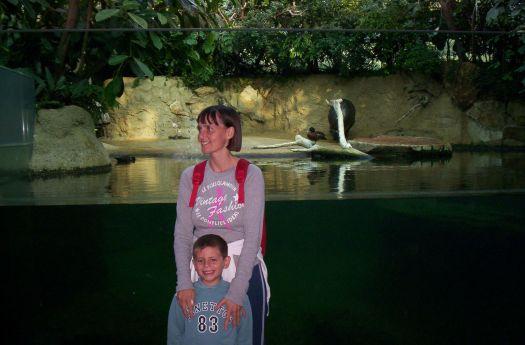 zoo di Berlino marco vignaroli