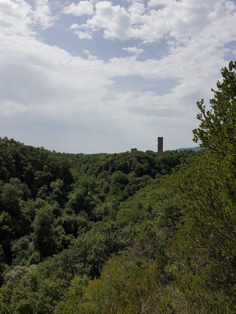 Veduta Torre Pasolini