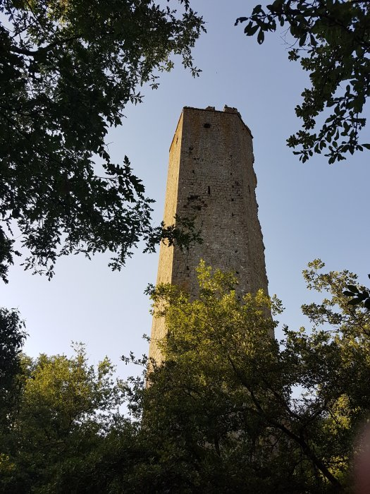 Torre Pasolini