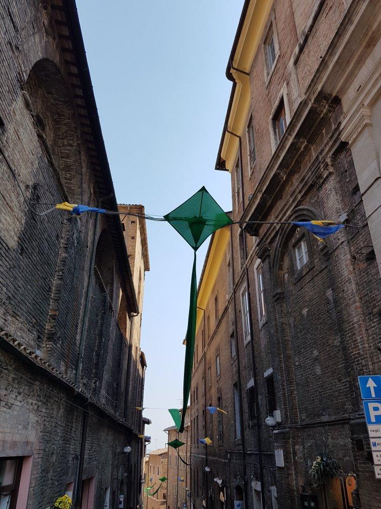 Urbino acquiloni