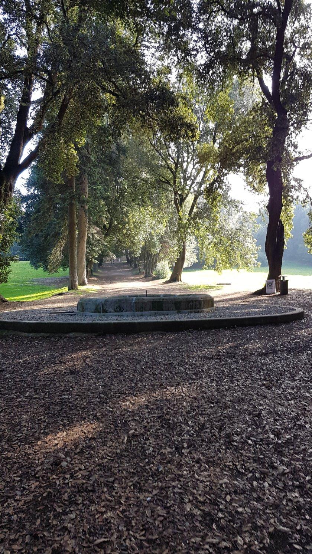 fontana di pietra villa altiri