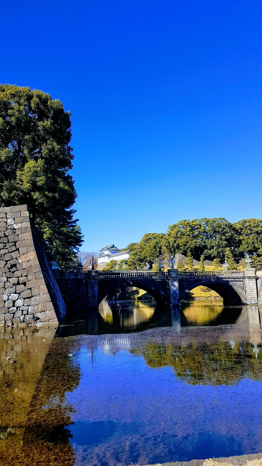 ponte Nijuashi