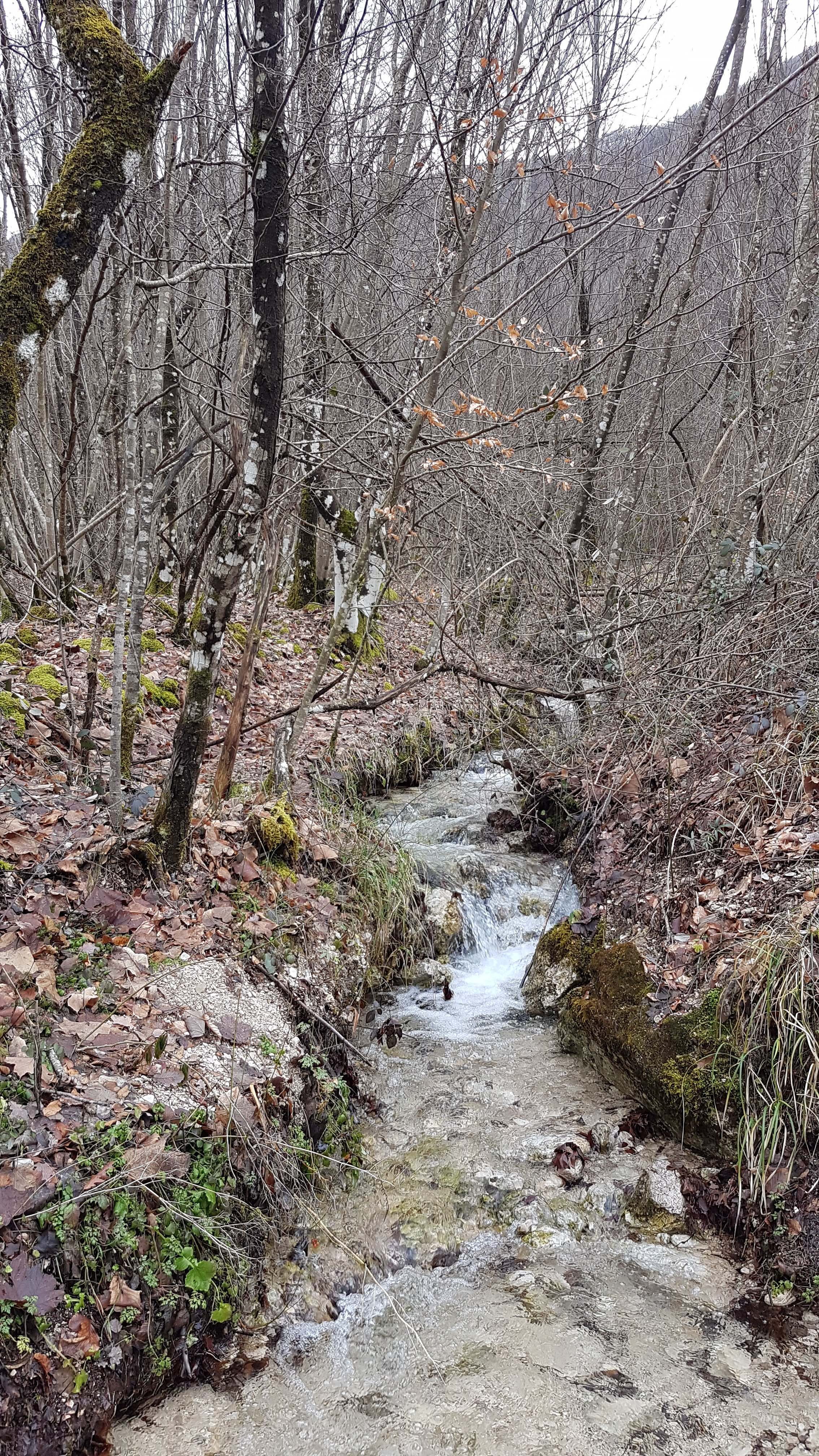 ruscello della cascata di Zompo
